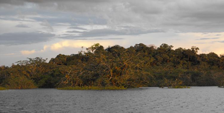 La lagune de Cuyabeno, Amazonie, Equateur - Trace ta Route, le blog de voyage