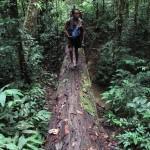 trek-jungle-malaisie-taman-negara-guide