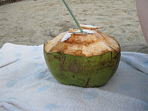 noix de coco sur la plage de canoa en equateur