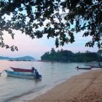 plage bateaux arbre iles perhentians malaisie
