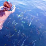 snorkeling poissons tropicaux iles perhentians malaisie
