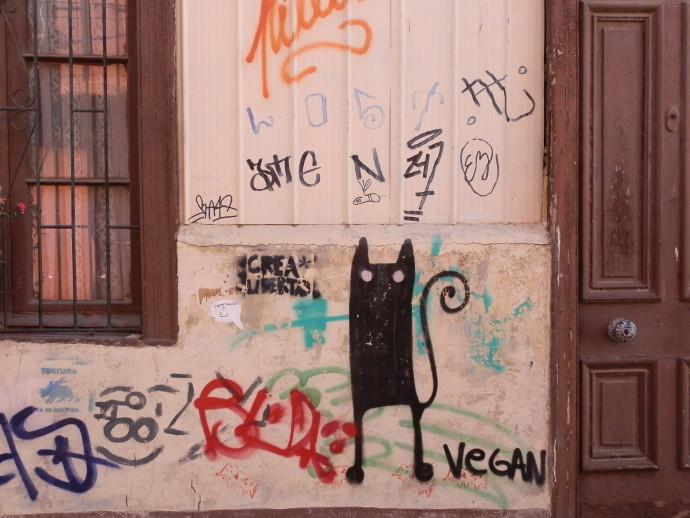 street art valparaiso chat noir blog voyage trace ta route