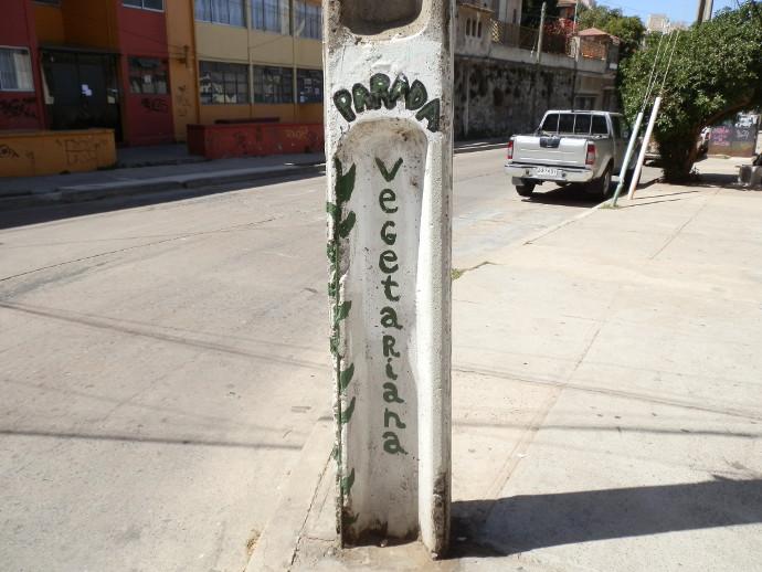 street art à valparaiso arrêt de bus végétarien blanc blog voyage trace ta route