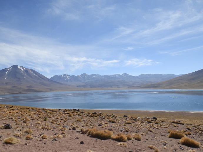 lagunas altiplanicas san pedro de atacama miscnati blog voyage trace ta route