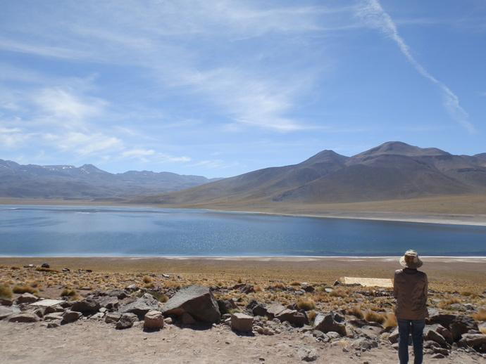 lagunas altiplanicas san pedro de atacama miscanti montagne andes blog voyage trace ta route