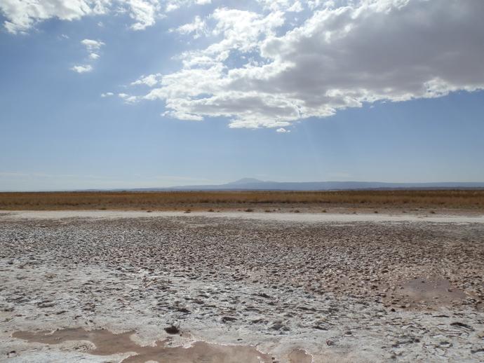 paysage désert d'atacama laguna cejar blog voyage trace ta route