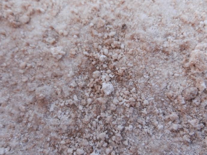 sel du désert d'atacama laguna cejar blog voyage trace ta route