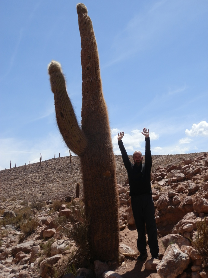 tristan #tracelemonde cactus geysers el tatio san pedro de atacama blog voyage trace ta route