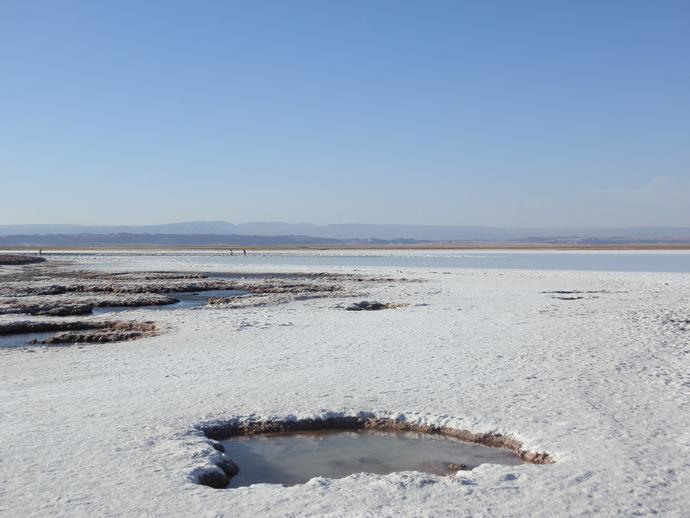 croutte de sel désert atacama laguna cejar blog voyage trace ta route