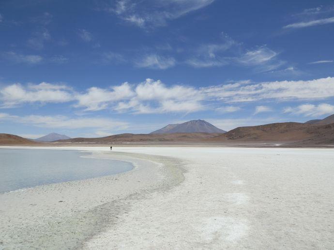 laguna honda sud lipez uyuni bolivie - blog voyage trace ta route