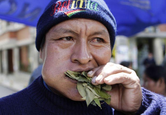 bolivien feuille de coca blog voyage trace ta route