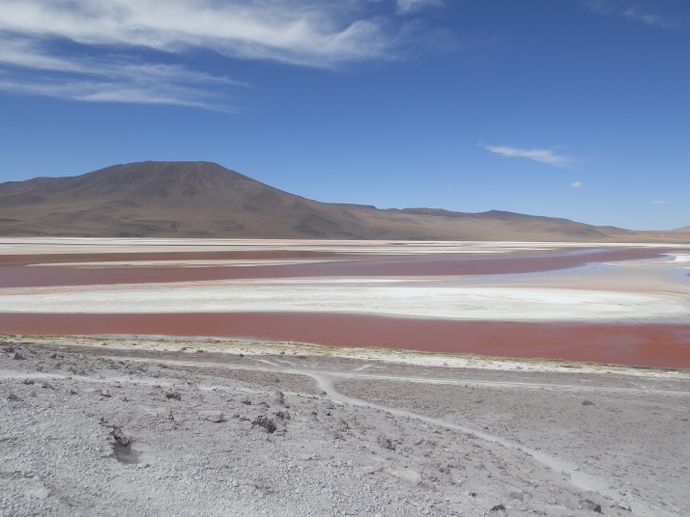 laguna colorada sud lipez bolivie - blog voyage trace ta route