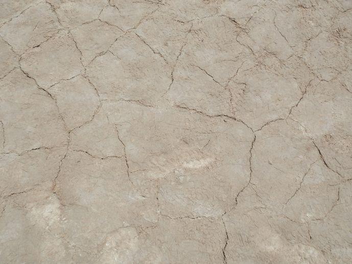 terre sel craquelée laguna honda sud lipez bolivie blog voyage trace ta route