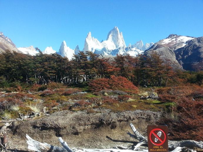 vue sur le mont fitz roy depuis le sentier de randonnée