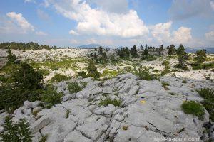 Le Plateau du Parmelan, lapiaz
