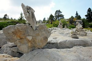 Sculpture de pierres sur le Plateau du Parmelan