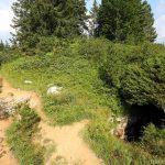 Trou au bord du sentier de randonnée du plateau du Parmelan