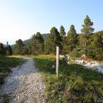 Sentier de randonnée du Plateau du Parmelan, accès à la Grande Glacière