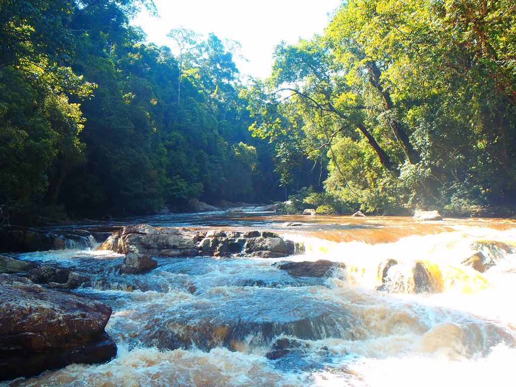 cascade lata berkoh dans le parc national Taman Negara, Malaisie