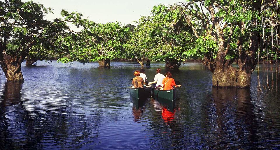 pirogue dans la lagune de cuyabeno, amazonie - Blog Voyage Trace Ta Route
