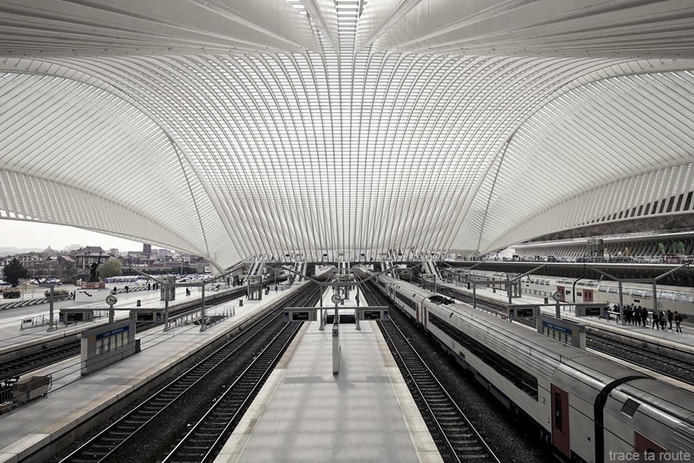 Architecture Gare des Guillemins Liège - Santiago Calatrava - Quais rails trains Toit voute en verre