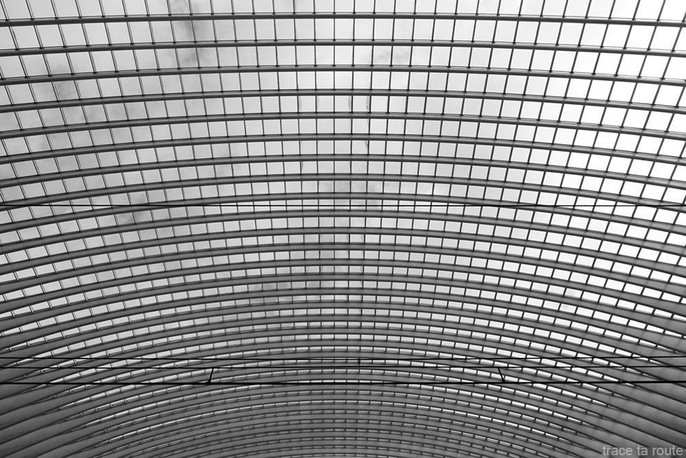 Architecture Gare des Guillemins Liège - Santiago Calatrava - Toit voute en verre