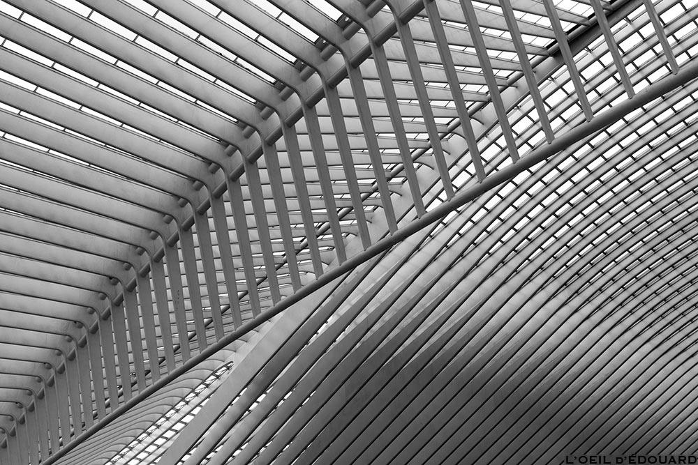Architecture Gare des Guillemins Liège - Santiago Calatrava - structure poutre béton Toit voute en verre © L'Oeil d'Édouard