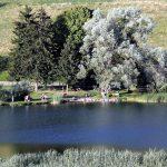 Baignade sur le bord du Lac de La Thuile, vers Chambéry, Massif des Bauges