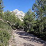Sentier de randonnée dans la Combe des Harmelins avec la Montagne Sainte-Victoire et la Croix de Provence en arrière-plan
