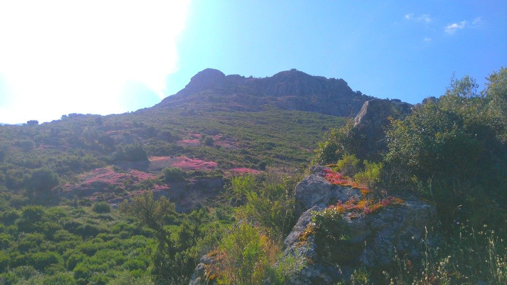 Corse-Mareemonti-etape-1-Calenzana-décor-montagne-rose