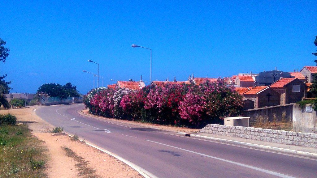 Corse-ajaccio-à-pieds-sur-la-route-des-sanguinaires-cimetière