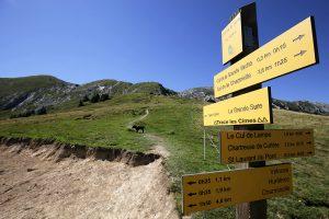 Itinéraire randonnée à la Grande Sure depuis le Col de la Sure - Massif de la Chartreuse