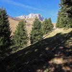 Sentier de randonnée sous le Mont Colombier - Massif des Bauges, Savoie