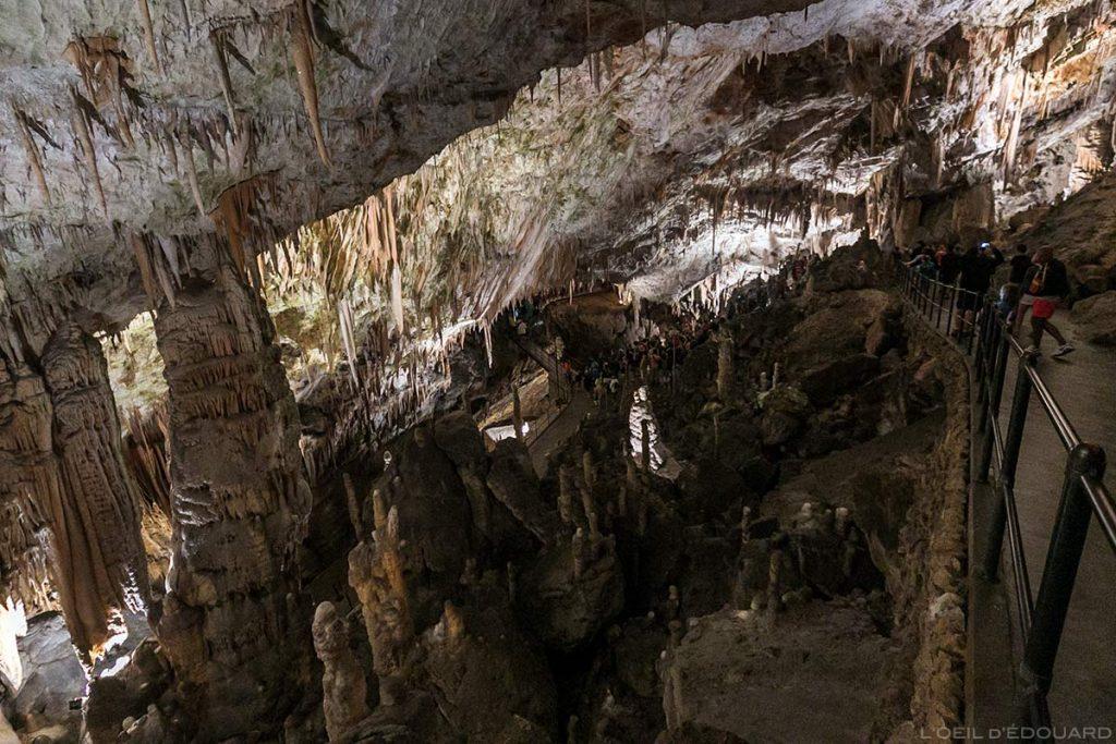 Stalactites dans la Grotte de Postojna, Slovénie - Postojnska jama Postojna cave Slovenia