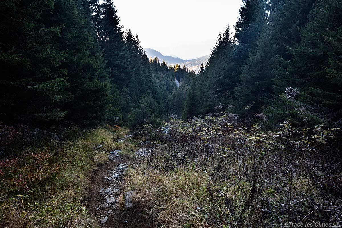 Itinéraire sentier de randonnée Bois de Chênevier, Massif du Taillefer, Isère