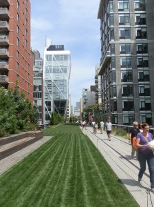 pelouse de la highline de new-york et les buildings environnants