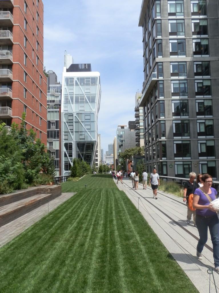 pelouse de la highline de new-york et les buildings environnants
