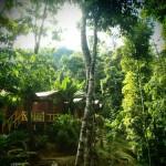 Guesthouse Matleon dans le Parc de Taman Negara, Malaisie - Trace Ta Route
