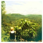 Julie dans le Parc de Taman Negara - Malaisie - Trace Ta Route