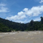 Rivière dans le parc Taman Negara en Malaisie - Trace Ta Route