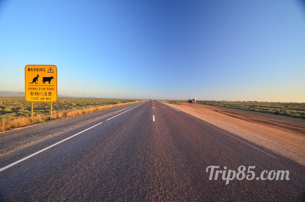 Route dans le bush Australie par blog voyage Trip 85