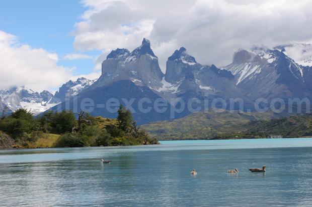 Parc Torres del Paine, Chili - Blog Voyage Trace Ta Route