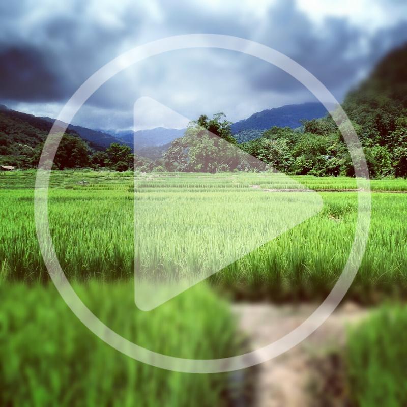 Voyage Thailande : 5 vidéos à voir absolument - Blog Voyage Trace Ta Route