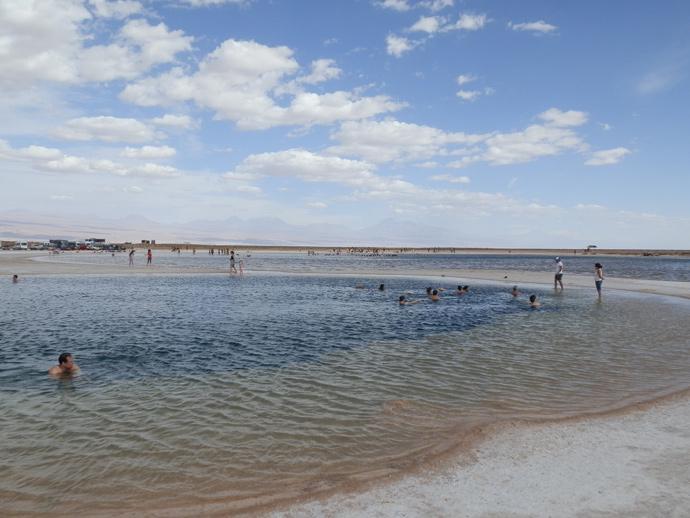 baignade laguna cejar désert atacama blog voyage trace ta route