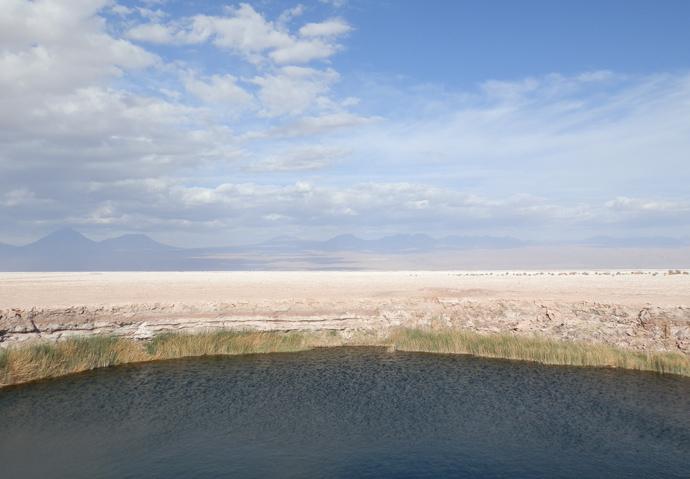 lagune eau douce désert atacama blog voyage trace ta route