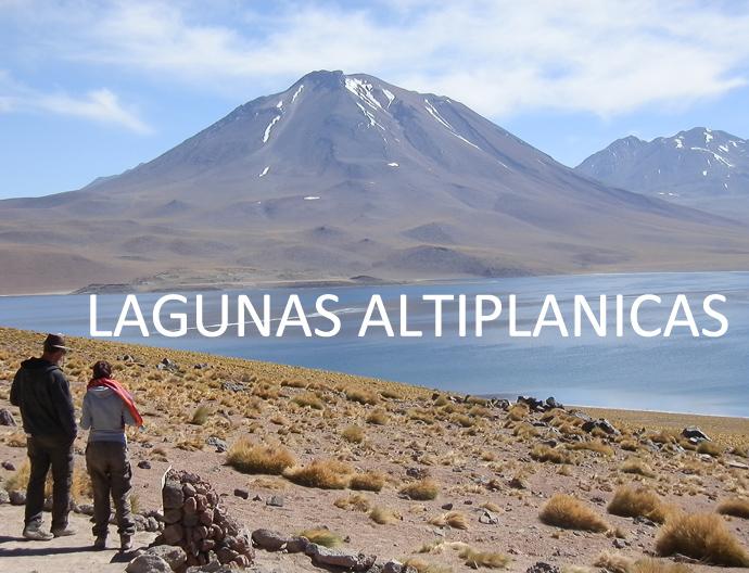 san pedro de atacama lagunas altiplanicas - blog voyage trace ta route