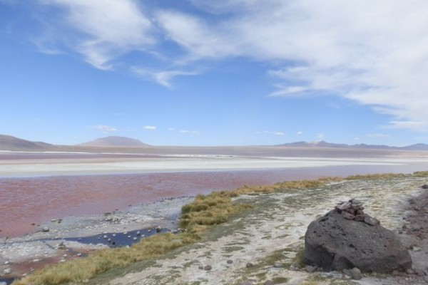 excursion uyuni sud lipez bolivie laguna colorada - blog voyage trace ta route