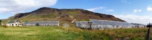 Serres abandonnées à Hveragerdi (Islande)