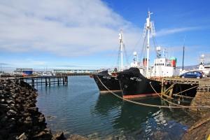 Bateaux de pêche dans le Port de Reykjavik, Islande
