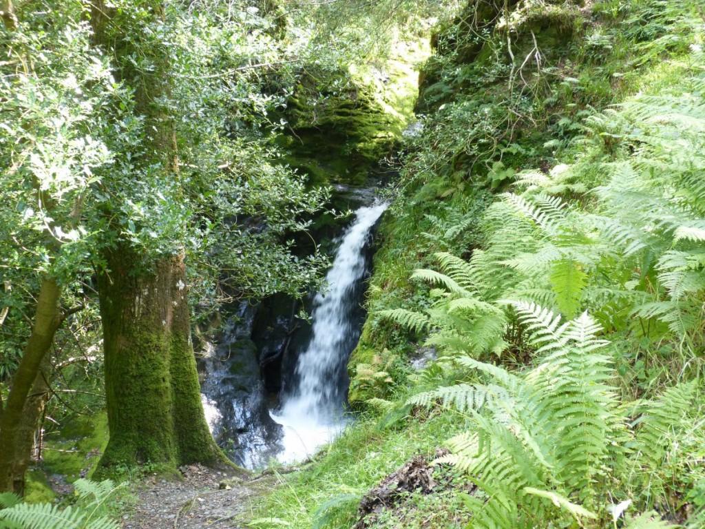 Cascade lors d'une rando à Glendalough - Blog Voyage Trace Ta Route